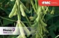 Insecticida Dinno Dinotefuran - FMC