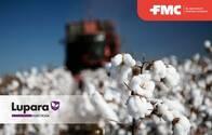 Insecticida - Acaricida Lupara® Mercaptotion - FMC