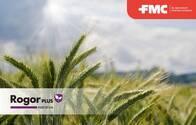 Insecticida - Acaricida Rogor Plus Dimetoato - FMC