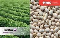 Insecticida - Acaricida Talstar® Bifentrin - FMC