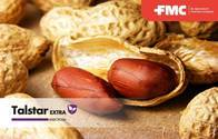Insecticida - Acaricida Talstar Extra® - FMC