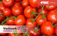 Insecticida Verimark TM Cyantraniliprole - FMC
