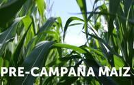 Kit Pre-Campaña Maiz