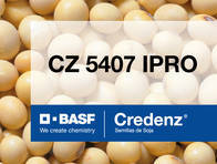 Soja Credenz CZ 5407 IPRO