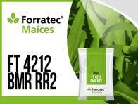 Maíz FT 4212 BMR RR2