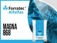 Alfalfa Magna 868