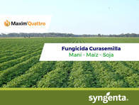 Fungicida Curasemilla Maxim ® Quattro
