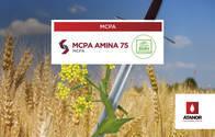 Herbicida MCPA Amina - Atanor