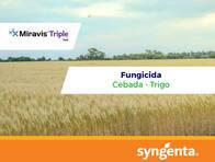 Fungicida Miravis® Triple Pack - Syngenta
