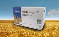 Pack Ecofértil Hypro Trigo 500