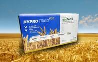 Pack Ecofértil Hypro Trigo 650