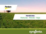 Herbicida Perdure Flumetsulam - Syngenta