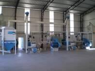 Producción De Expeller Y Aceite Por Extrusión-Prensado