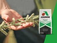Soja AW 7720 IPRO Asgrow - NUEVO