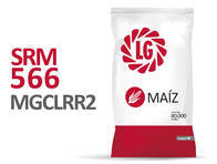 Maíz SRM 566 MGCLRR2