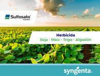 Herbicida Sulfosato Touchdown ® Glifosato - Syngenta
