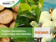 Insecticida Retaker  - SummitAgro