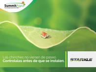 Insecticida Starkle