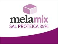 Suplemento Melamix Sal Proteica 35