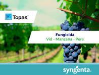 Fungicida Topas® Penconazole- Syngenta