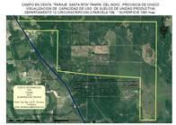 Campo Agroganadero 1620 Has. S/ruta 3. Pampa Del Indio