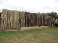 Postes De Eucaliptus Curados Ezalma