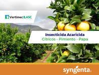 Insecticida Vertimec ® 8.4 SC Abamectina - Syngenta